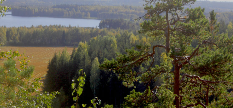 View from Määkymäki hill in Laurinmäki, Janakkala