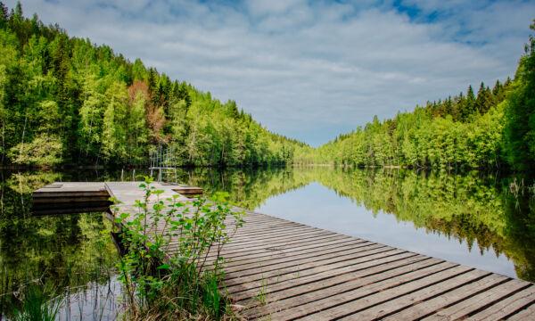 Pitkä puulaituri Rahitunlammen rannalta kuvattuna.