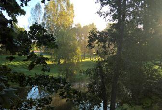 Auringonnousu kesäisessä Lyylinpuistossa.