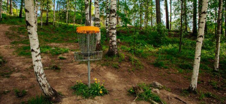 Frisbeegolf maali koivikon keskellä metsässä.