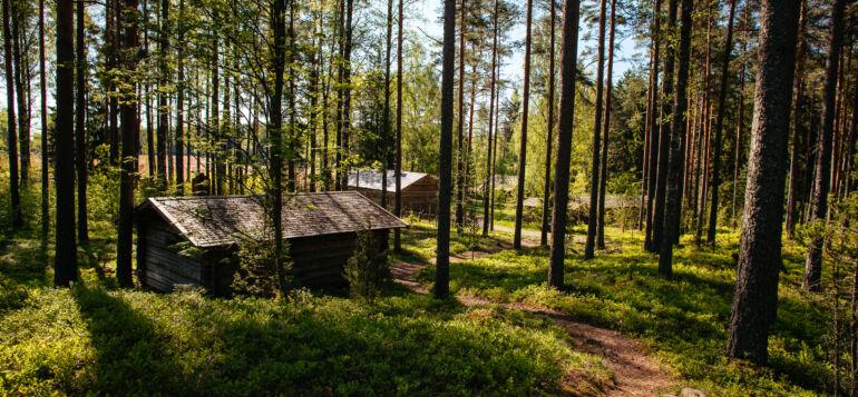 Laurinmäen museoalueen rakennuksia.