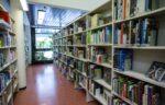 Kirjaston aikuistenosasto ja vehreä näkymä ulos ikkunasta.