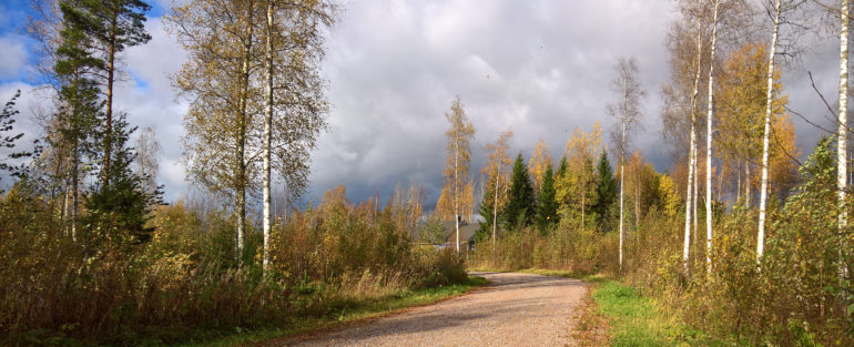 stoltinkorpi_leppäkoski