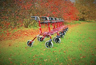 Rivi pirteän punaisia rollaattoreja syksyisessä puutarhassa.