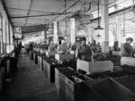 Lumpunrepijöitä työssään 1900-luvulla