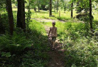 Tyttö kävelee metsäpolulla Laurinmäellä.