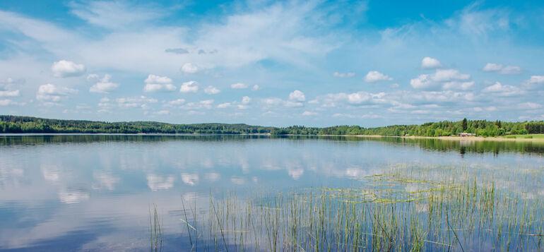 Kesäinen järvimaisema Rehakasta.