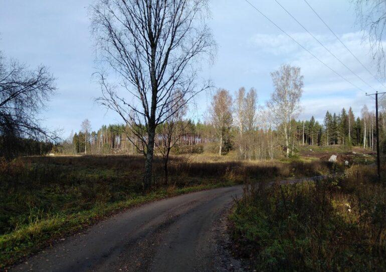 Haja-asutusalueen tontti Viraslaas Saarelantiellä metsä reunassa hiekkatien varrella..