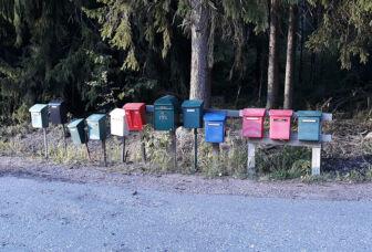 Eriväriset postilaatikot rivissä metsänreunassa.